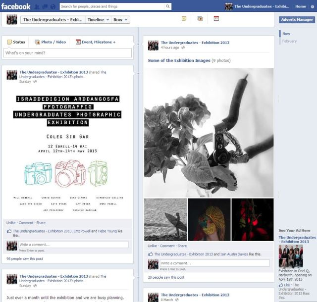 The Undergraduates Exhibition, 2013, Facebook Page