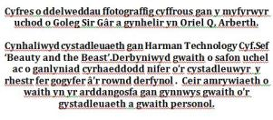 Microsoft Word needs to learn Welsh.